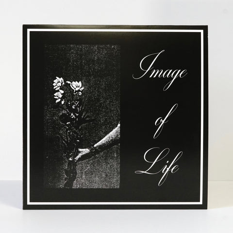 Image Of Life ‎– Attended By Silence (vinyl LP)