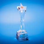 Star Award | CS931 - D One Crystal Award Trophy Malaysia