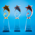 Star Award | CS935 A/B/C - D One Crystal Award Trophy Malaysia