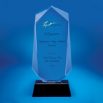 Crystal Plaque | D4021 - D One Crystal Award Trophy Malaysia