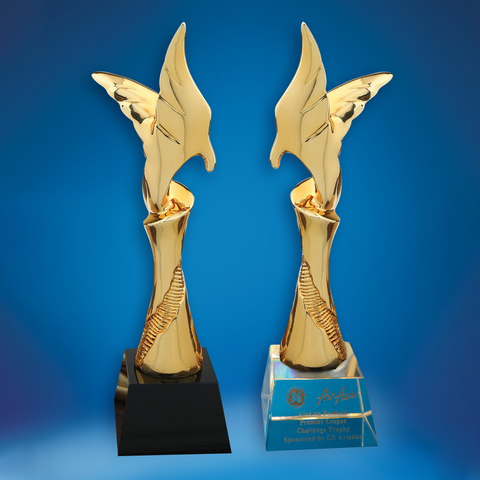 Crystal Trophy | D5036 A/B - D One Crystal Award Trophy Malaysia