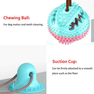 Dog safe Chewable ball with Suction Cup - kartout.com