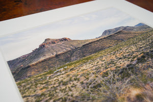 Evening in the Chihuahuan Desert: Homer Wilson Ranch