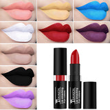 12 Color Waterproof Red Velvet  Nude Matte Lipstick