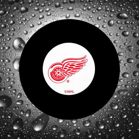 Glenn Hall Pre-Order Detroit Red Wings Autographed Puck