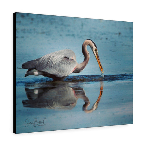 Great Blue Heron in the Mirror Print on Canvas - www.thedesigntank.com