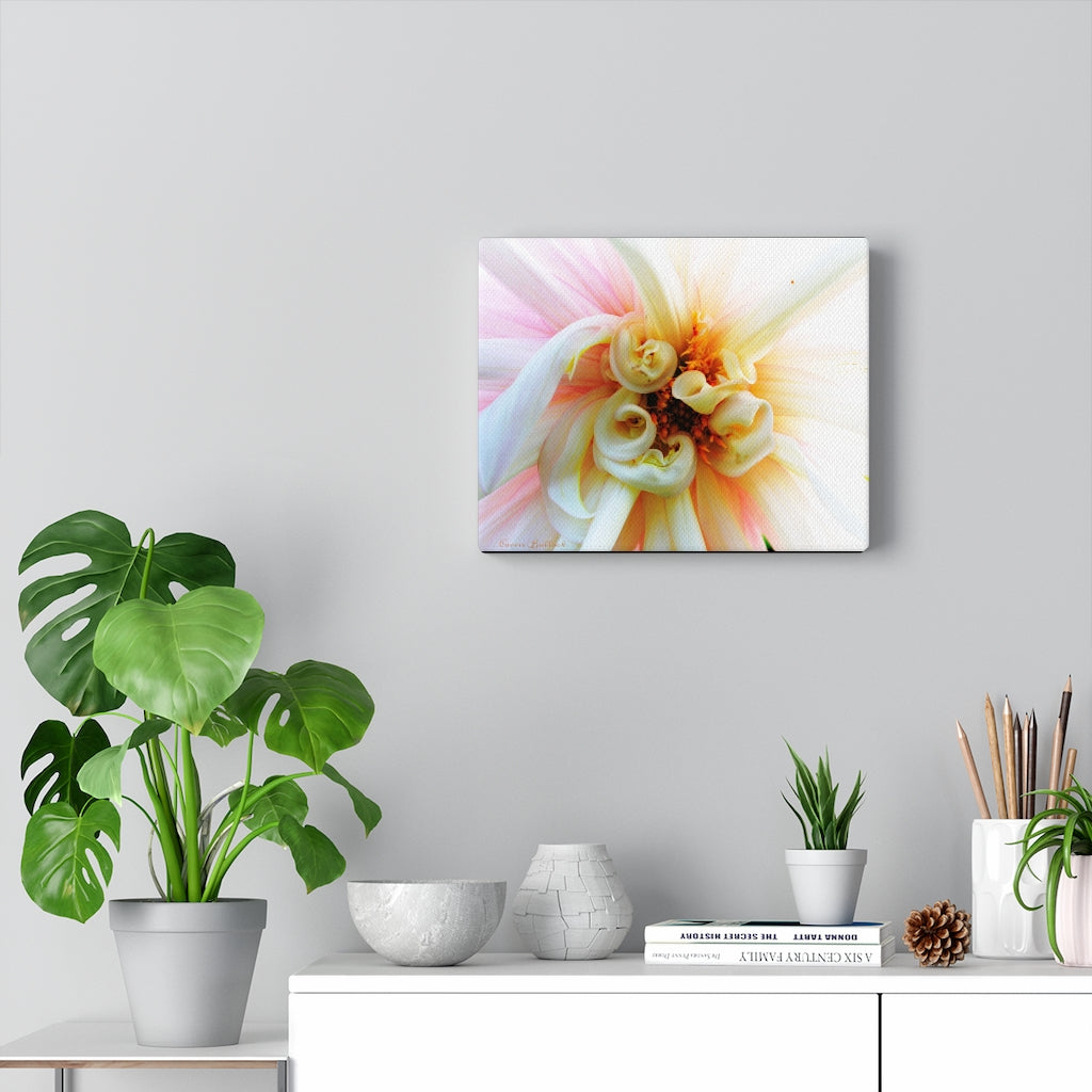 Pink and White Dahlia Print on Canvas - www.thedesigntank.com