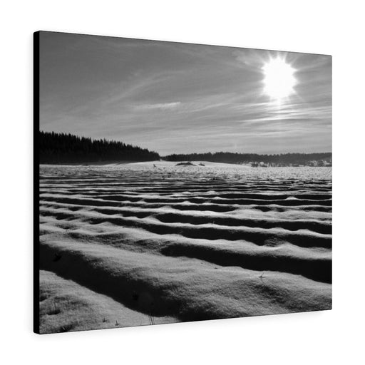 Snow in the Meadow Print on Canvas - www.thedesigntank.com