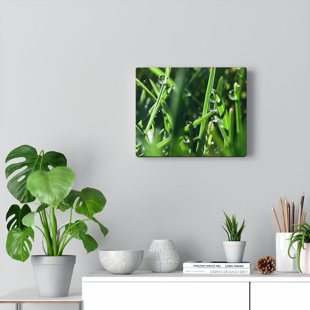 Morning Dew Print on Canvas - Design Tank