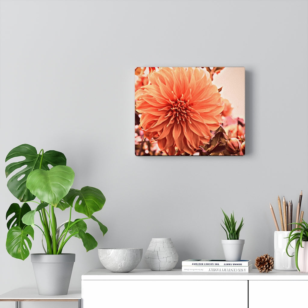 Ginger Peach Dahlia Print on Canvas - www.thedesigntank.com