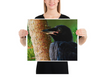 Baby American Crow Print on Fine Art Paper by Carrie Bullock - Design Tank