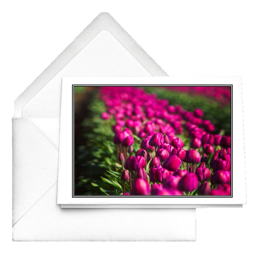 Purple Skagit Tulips Notecards - www.thedesigntank.com