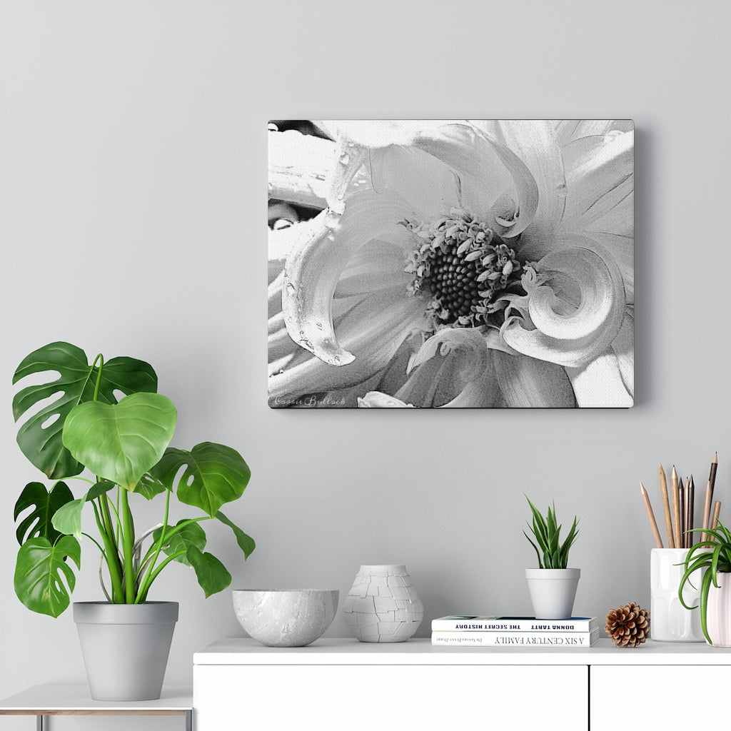 White Dahlia Print on Canvas - www.thedesigntank.com