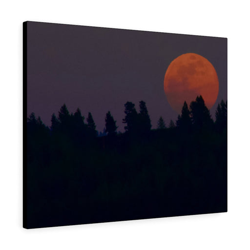 Moon Print on Canvas - www.thedesigntank.com