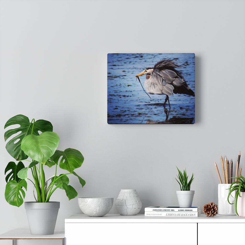 Great Blue Heron Snacks Print on Canvas - www.thedesigntank.com