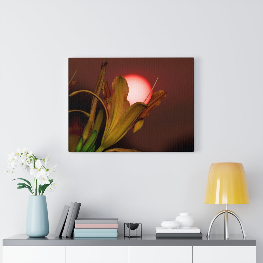 Flower and the Sunset Print on Canvas - www.thedesigntank.com