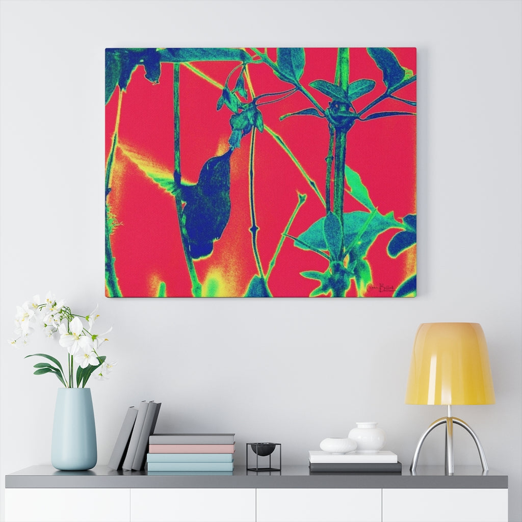 Early Morning Hummingbird Print on Canvas - www.thedesigntank.com