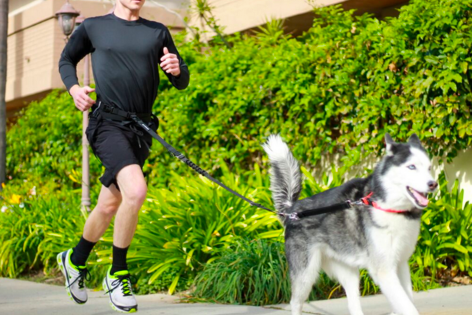 In The Market For The Best Dog Gear Ever? SportLeash Has Your Back!