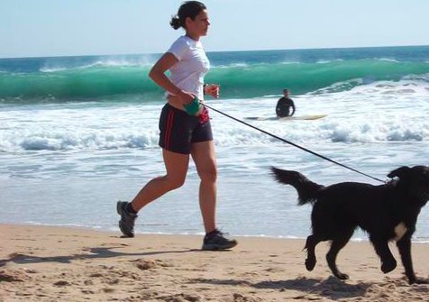 The Breakdown: Why Dogs Need Exercise [5 REASONS]