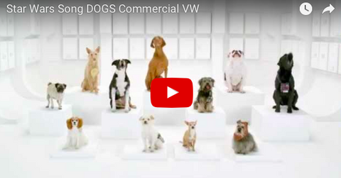 Dogs Barking Star Wars Song In VW Commercial [VIDEO]