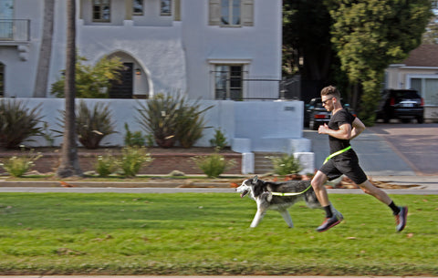 man running with dog using hands free leash