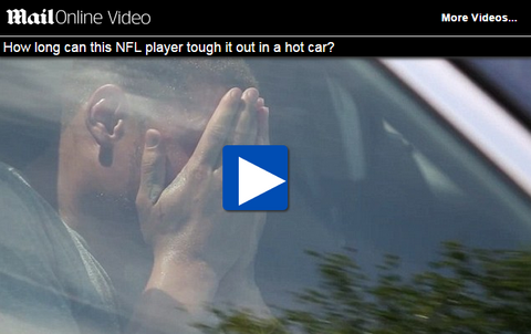 PETA video for dogs in hot car NFL player