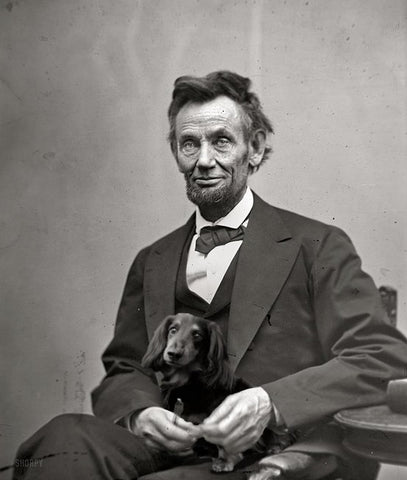 president abraham lincoln dog