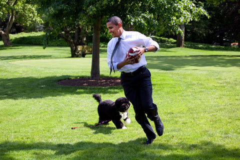 president barack obama and dog