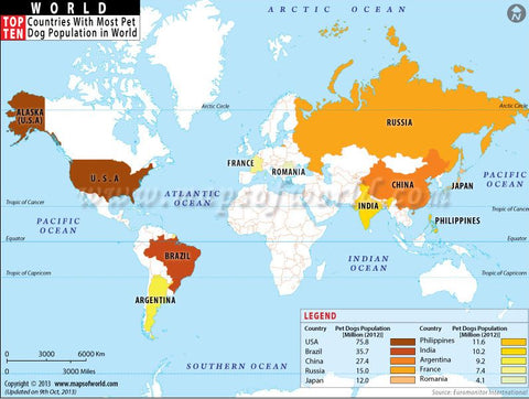 highest dog population per country