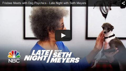 frisbee meets dog psychics late night seth meyers