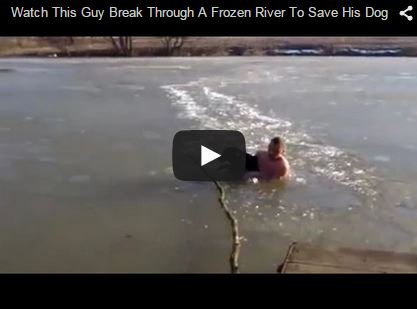 man breaks through frozen river to save dog