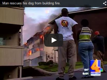 man arrested after rescuing dog from building fire