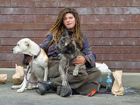 national best friends day homeless woman with dogs