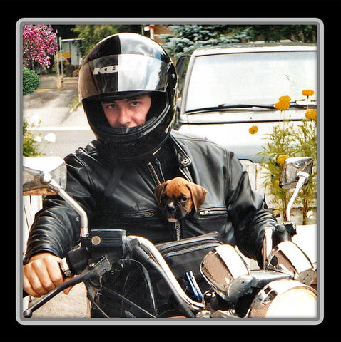 mans best friend man riding motorcycle with dog