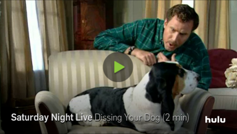 hilarious dog video dissing your dog will ferrell saturday night live skit