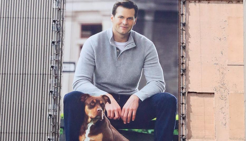 tom brady superbowl dog pitbull ugg campaign