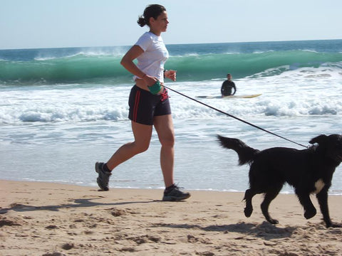running with your dog walking your dog