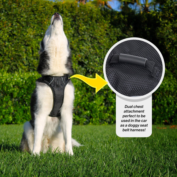 SportLeash Best Dog Harness Big Dog Harness SportHarness Car Seat Harness