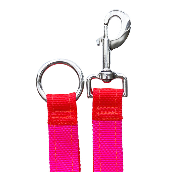 Neon Orange Neon Pink Dog Leash Extender Sportleash