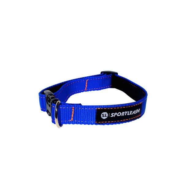 Blue Neon Orange Neoprene Dog Collar