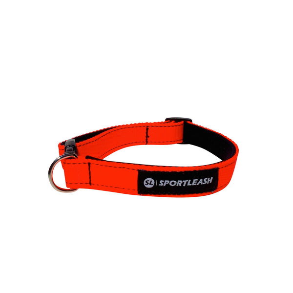 Neon Orange Neoprene Dog Collar