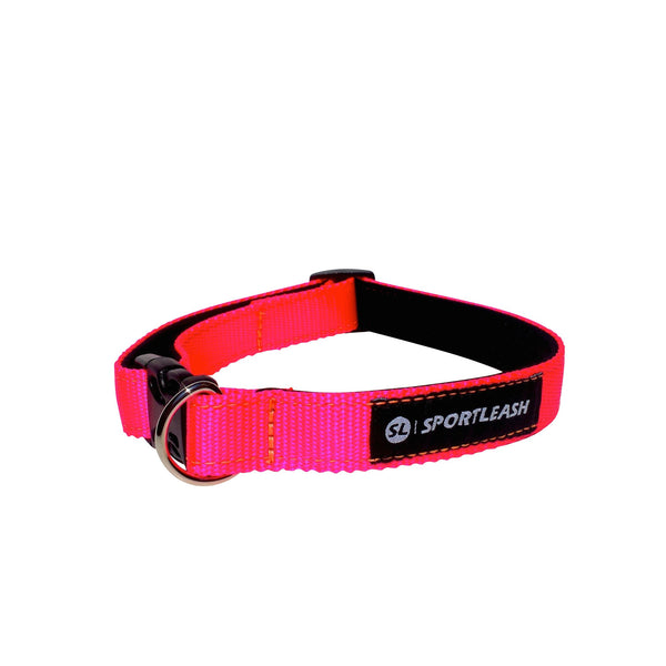 Neon Pink Neon Orange Neoprene Dog Collar