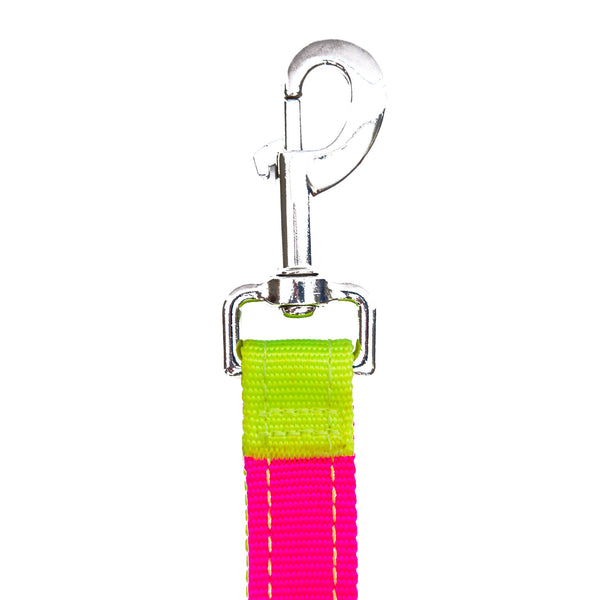 Dog Leash Coupler Splitter - Neon Yellow Neon Pink SportLeash