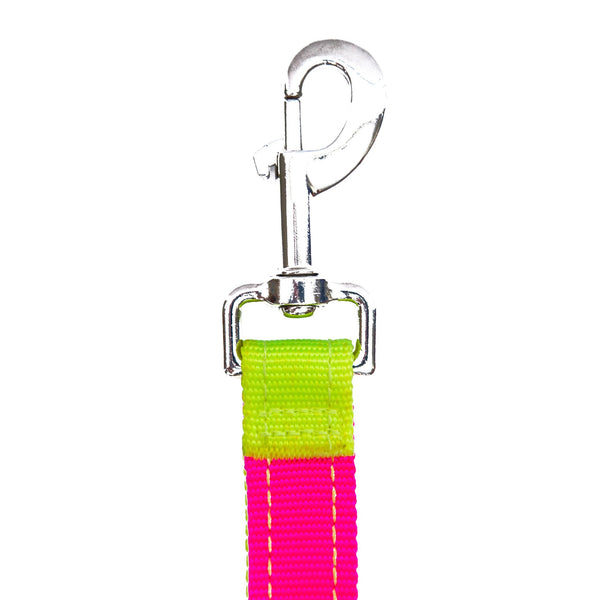 Neon Yellow Neon Pink Dog Leash Sportleash