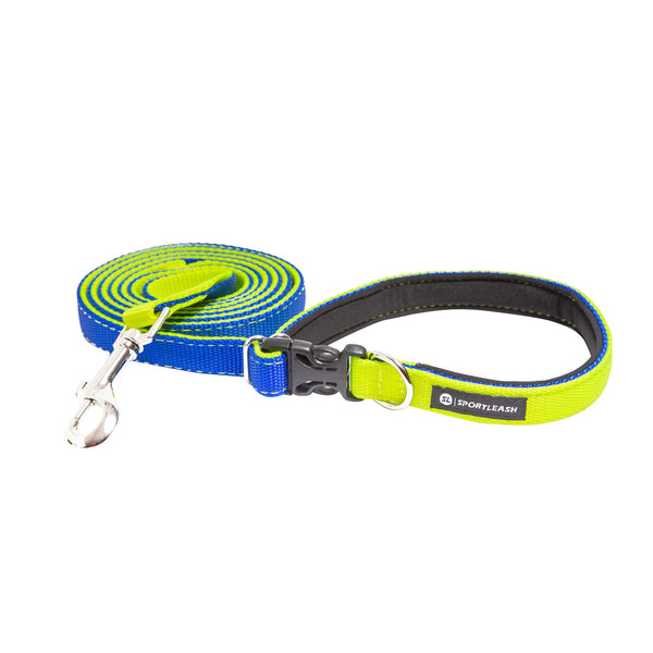 Hands Free Neon Yellow Royal Blue Leash