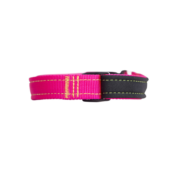 Neon Pink Neon Yellow Neoprene Dog Collar