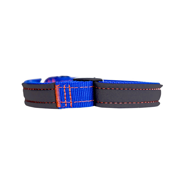Royal Blue Neon Orange Neoprene Dog Collar
