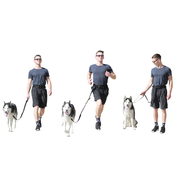 Running Pack Dog Leash Bungee Leash Short Lead