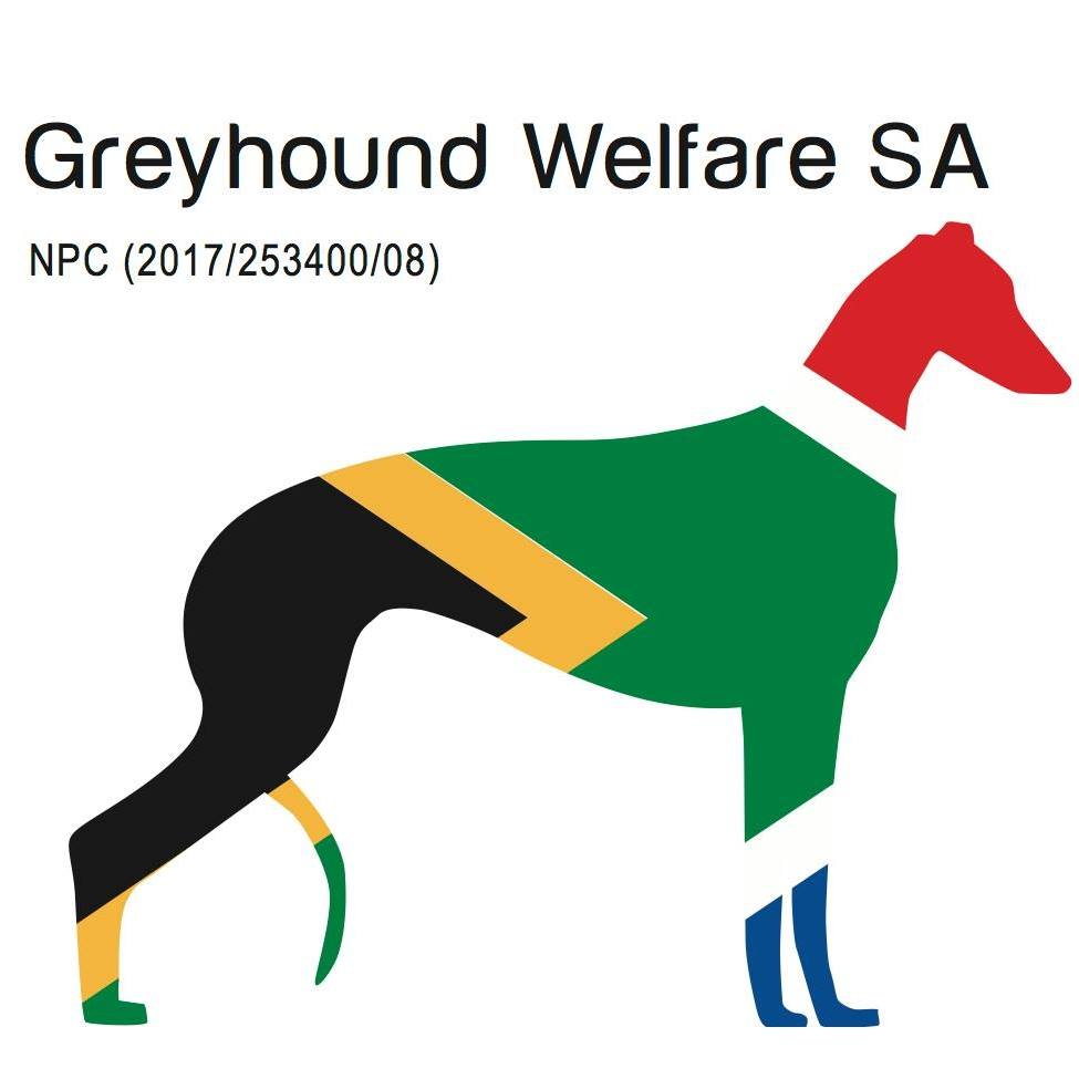 Valentines Day Dog Walk with Greyhound Welfare
