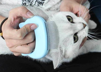 Pet Hair Removal Massaging Shell Comb - rockabilly.store